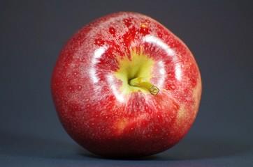 Roter Apfel vor schwarzem Hintergrund
