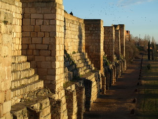 Alcazaba Romana de Mérida 6