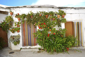 Entrance to the old spanish house and potted flowers.