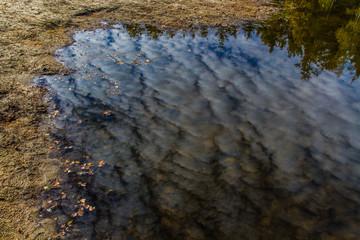 Water reflection of clouds-Trebon,Czech Republic