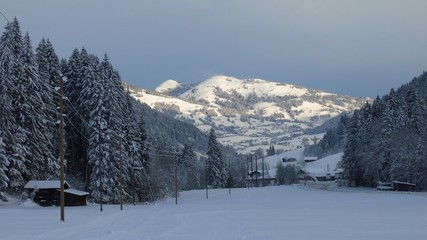 Early morning on a winter day, scene near Gstaad