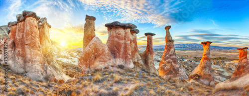 Foto op Plexiglas Turkey Mushrooms