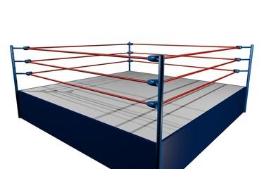 Fight wrestling