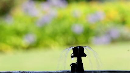 Garden Irrigation bubbler watering flower pot