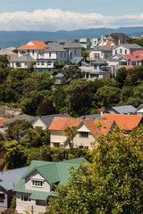 Wellington suburb with traditional wooden houses