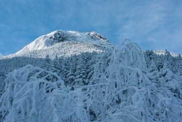樹氷と山と空
