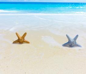 Vacations Memories Sand
