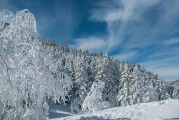 樹氷と空と雲