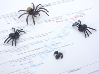 Bugs in the source code
