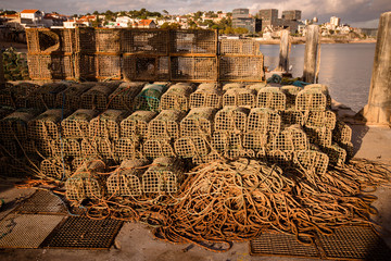 traps for catching crab and lobster in the port