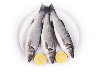 Three fresh seabass fish on plate.