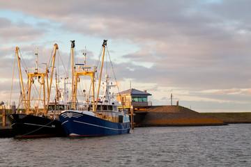 fishing ships at harbor, Den Oever, Netherlands