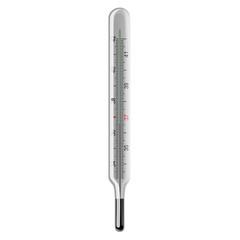 Mercury thermometer. Raster