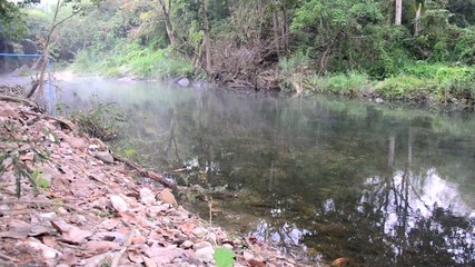 Winter season at forest and stream or canal of Suan Phueng