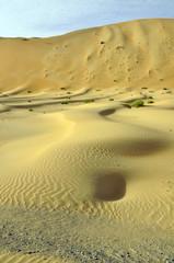 Liwa sand dunes & ripples