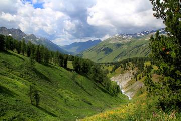 вид на Катунский хребет, Алтай