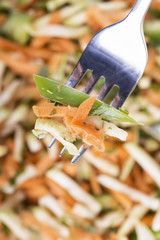 salad made from carrots and cabbage