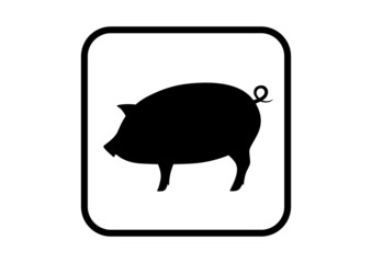 Piggy icon on white background