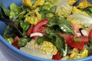 Salat mit Paprika und Tomaten