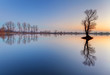 canvas print picture - Alone tree in lake with color sky