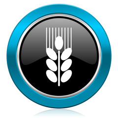 grain glossy icon agriculture sign