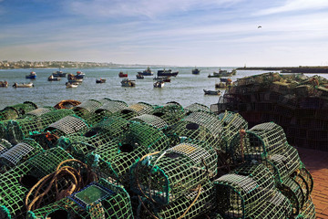 Fishing Traps