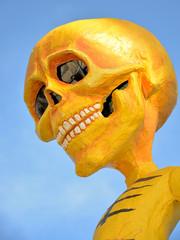 maschera scheletro carro mascherato