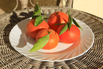 Freshly picked ripe Oranges on a plate