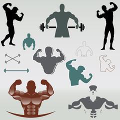 bodybuilder vector design