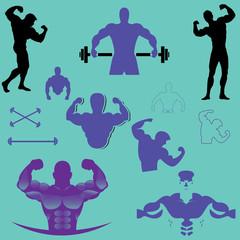 bodybuilder vector design collection blue