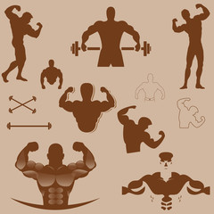 bodybuilder vector design collection brown