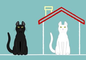 家のある猫とない猫