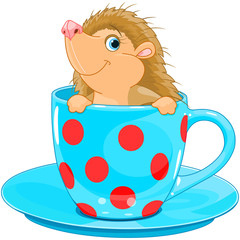 Hedgehog in the tea cup