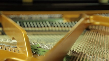 Work  hammers inside the grand piano with the lid open