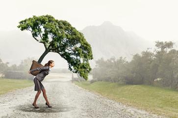 Tree of success