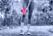 Muscle sports injury of female runner thigh - 75917895