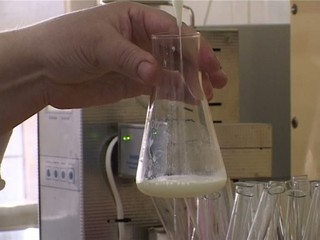 chemical analysis of milk factory