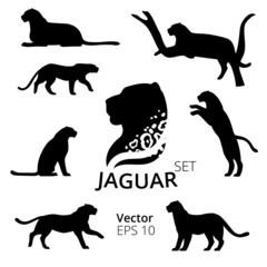 Jaguar set vector