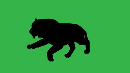 Panther moving silhouette