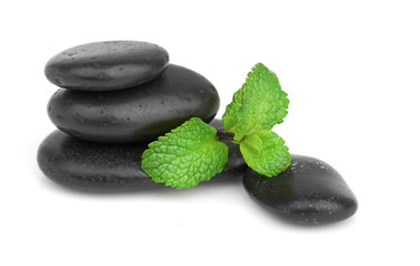 Fresh mint on the black stones with drops