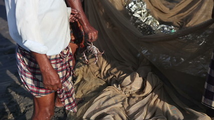 Indian fisherman in national dress dhoti holding a crab