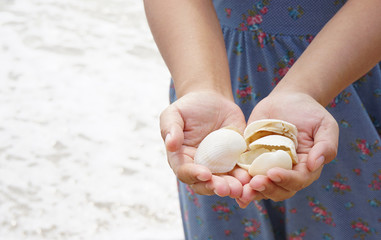 A lady holding white seashells at the beach