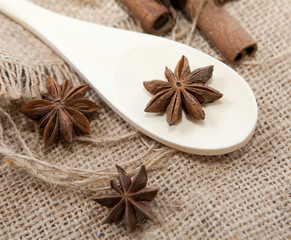 étoile d'anis sur cuillère en bois