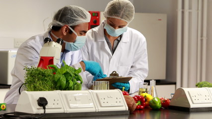 Scientists experimenting on food together