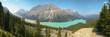 Peyto lake panoramic view. Icefield parkway. Canada