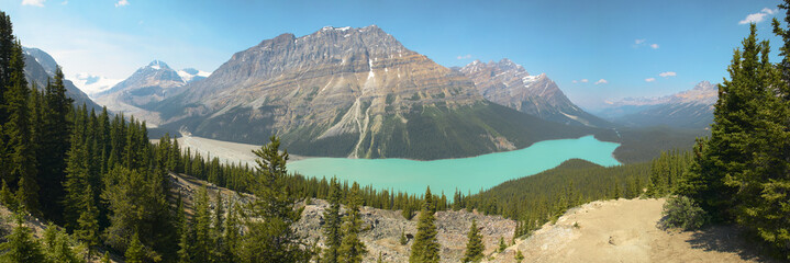 Peyto lake panoramic view. Icefield parkway. Canada