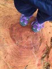 Kinderfüße auf Baumstumpf