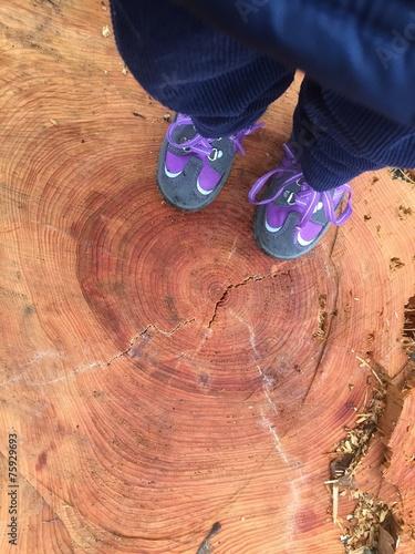 canvas print picture Kinderfüße auf Baumstumpf