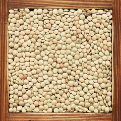 Lentil, collection of products