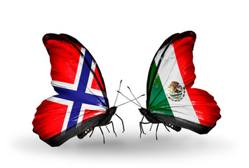 Two butterflies with flags Norway and Mexico